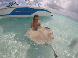 SWS Cayman Stingray City
