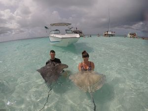Stingray City with SWS Cayman